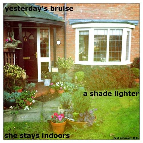 Yesterdays_bruise