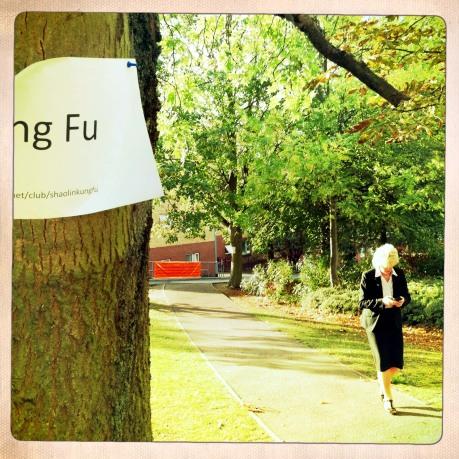 Kung Fu Walking