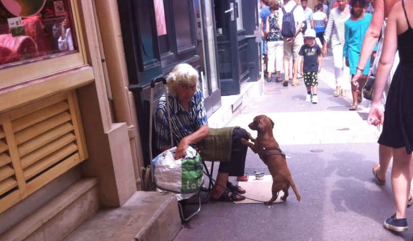 Beggar and Dog - St Tropez 2013  Paul Conneally
